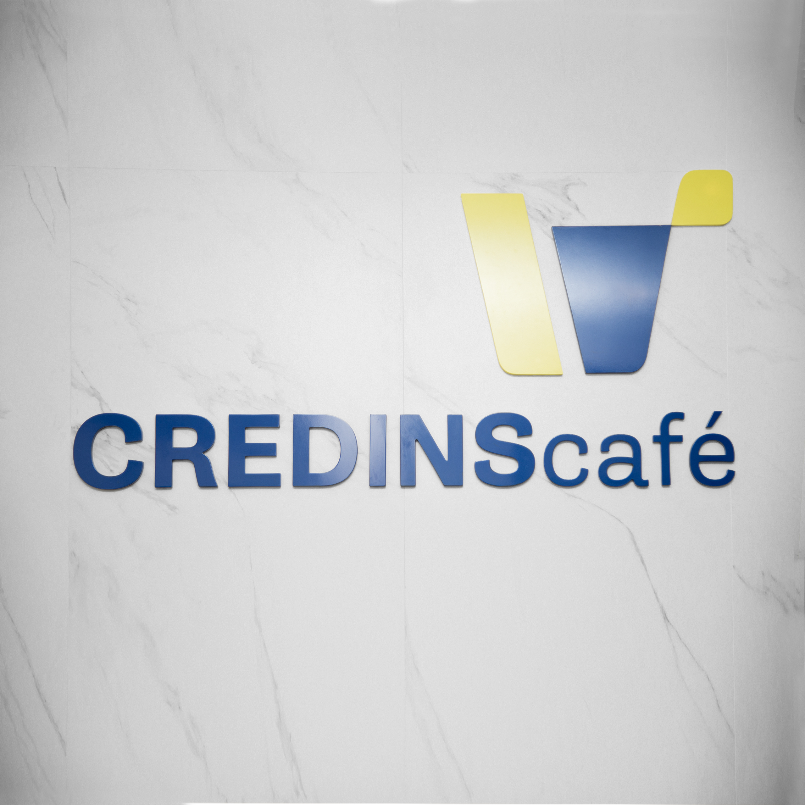 Credins Bank Project Img 2 - Vatra Agency / Founder & CEO Gerton Bejo