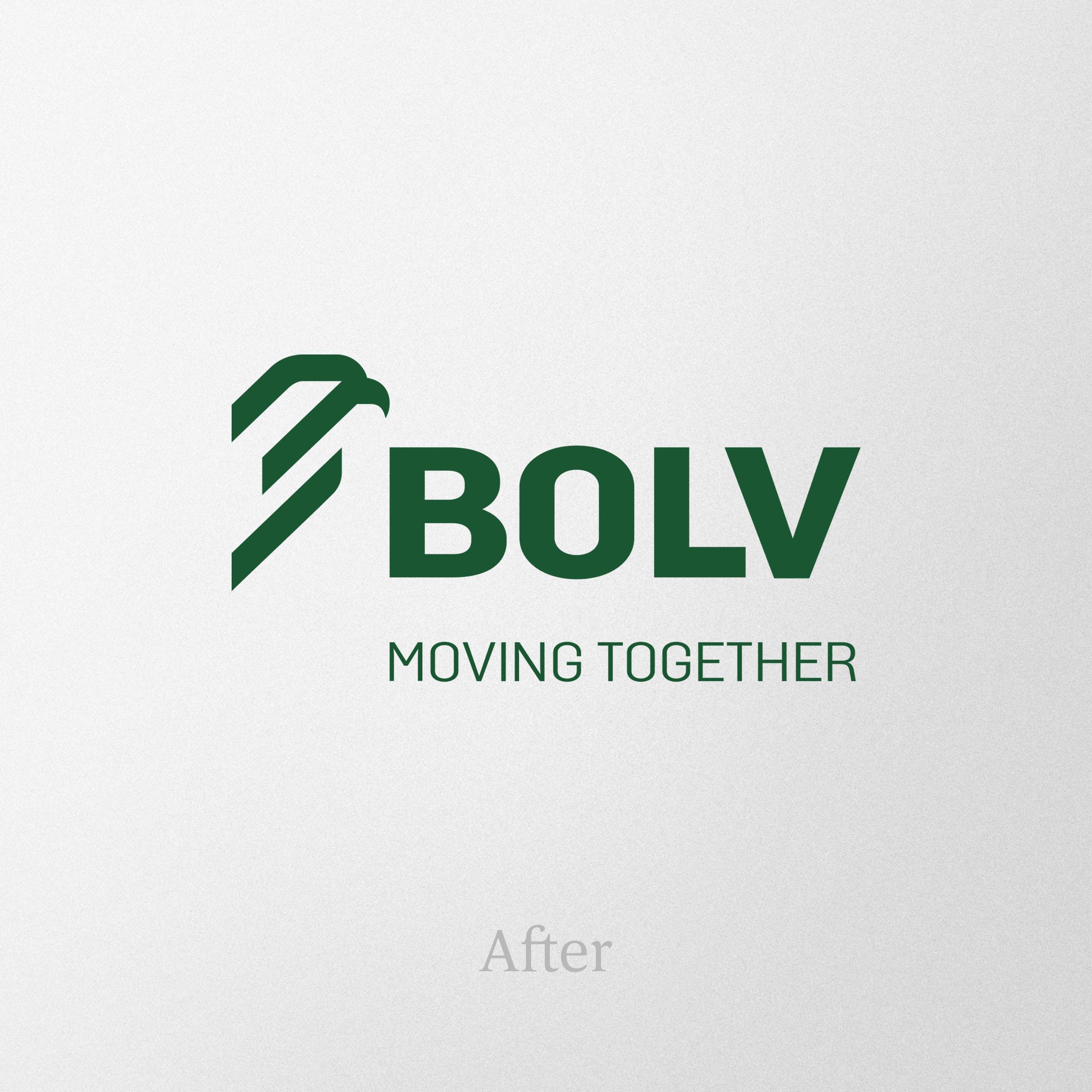 Bolv Project Img 6 - Vatra Agency / Founder & CEO Gerton Bejo