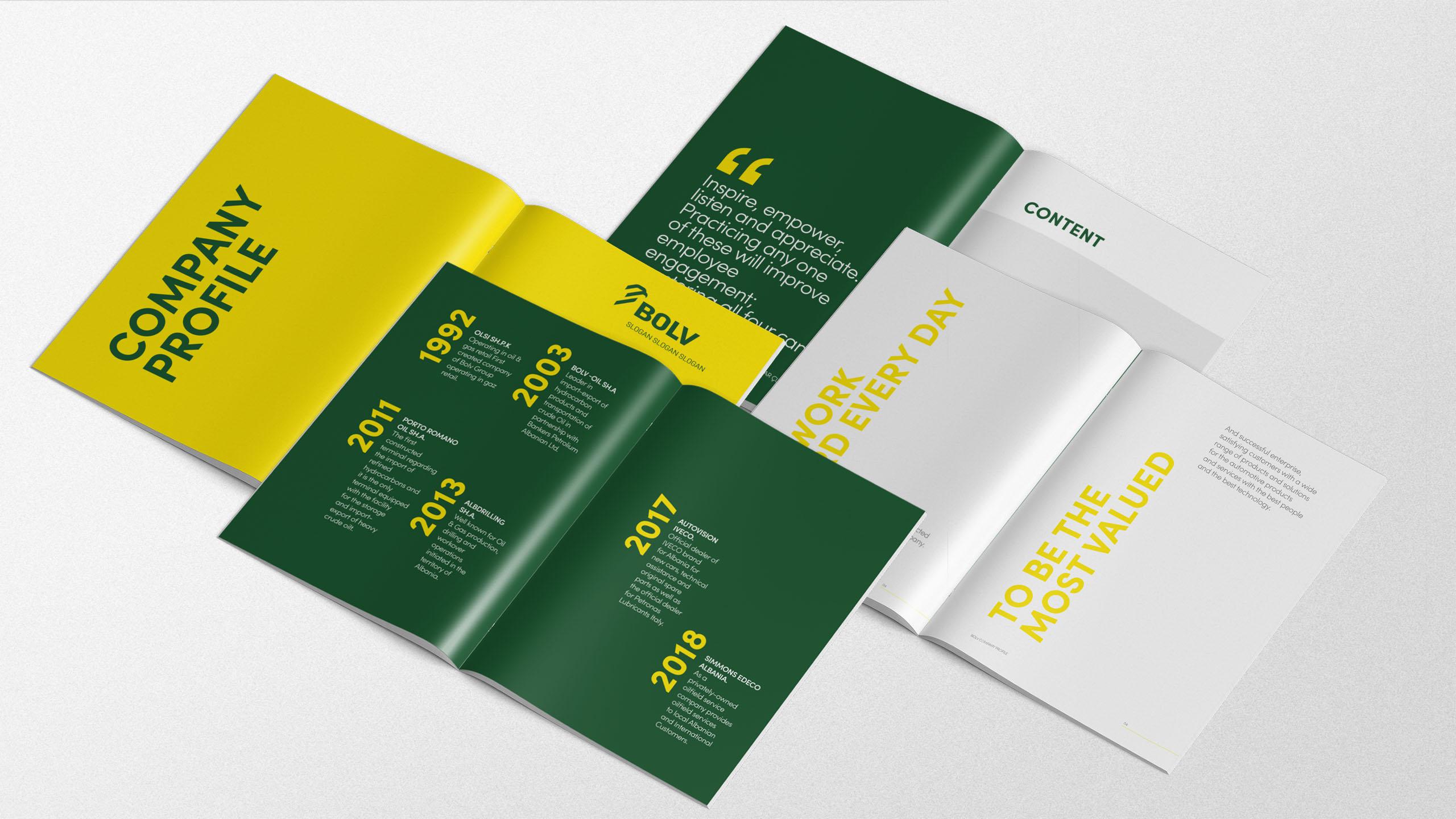 Bolv Group Project Img 13 - Vatra Agency / Founder & CEO Gerton Bejo